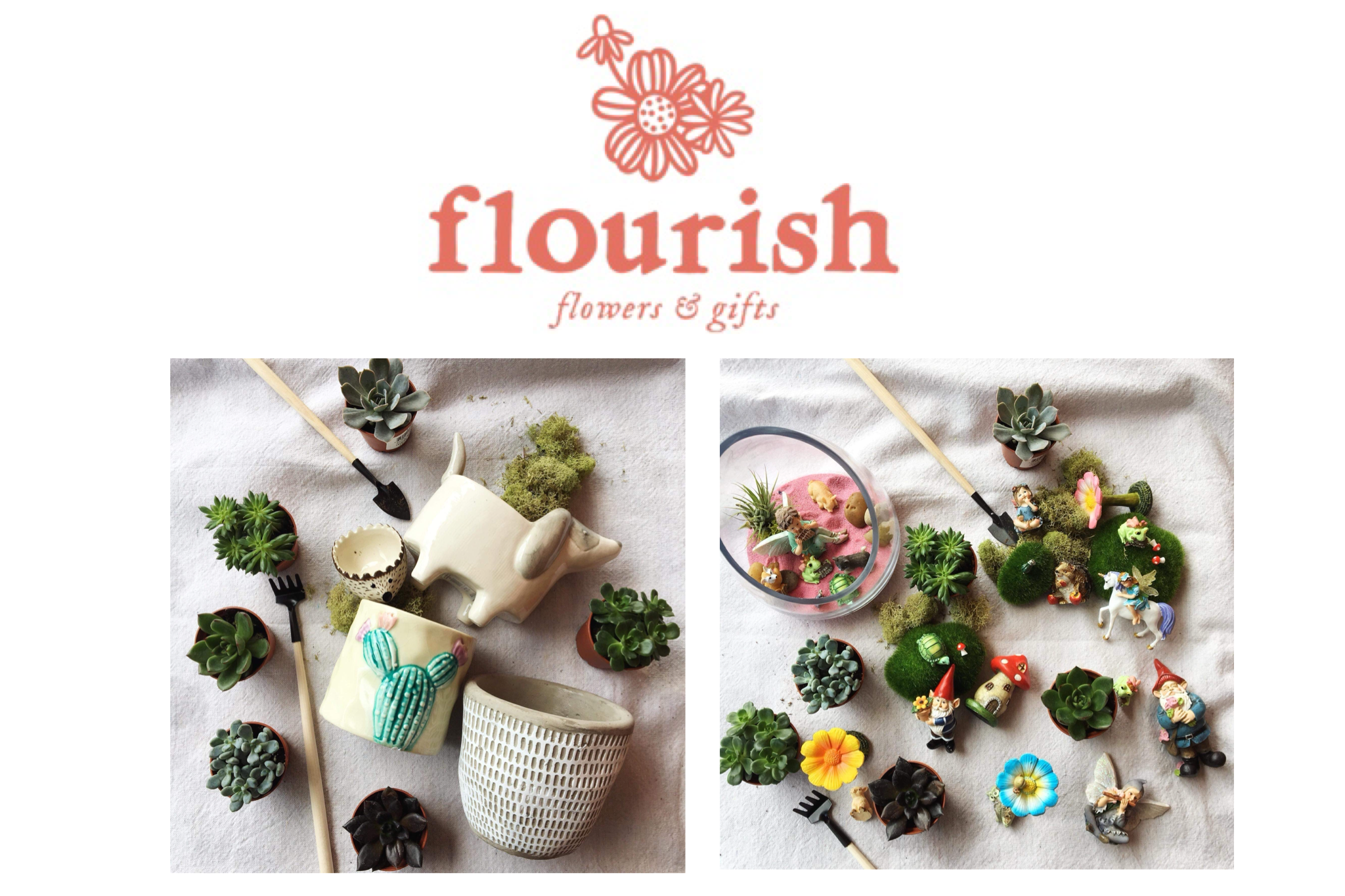Build Your Own Succulent Bar at Flourish Flower and Gifts